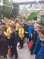 Primary 2 Trip to Belfast Museum